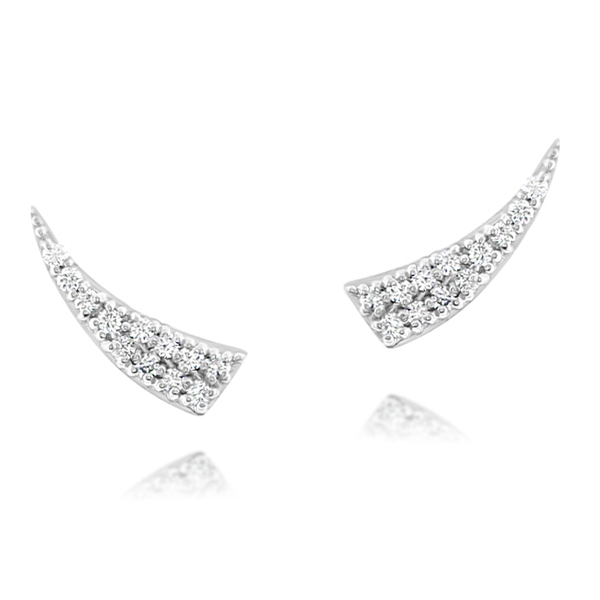Diamond Ear Climbers photo