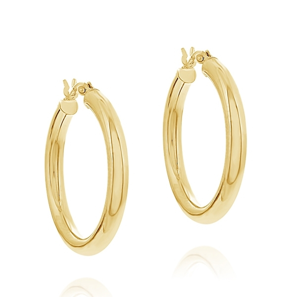 Hoop Earrings photo